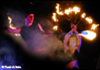 FlambaSaltatio  Feuershow Feuerperformance Feuerartistik