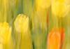 Lightpainting-Lichtmalereien und malerische Fotografie